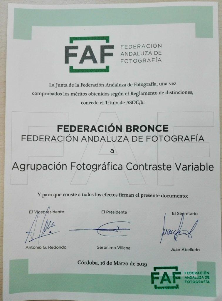 diploma bronce