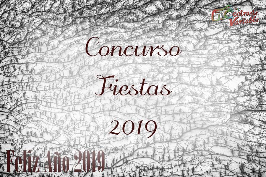 concurso fiestas 2019