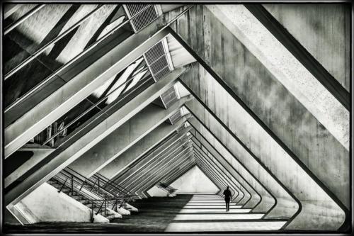 Blanco-y-negro-2020_D.WARREN-En el Museo de Ciencias.Valencia.JPG