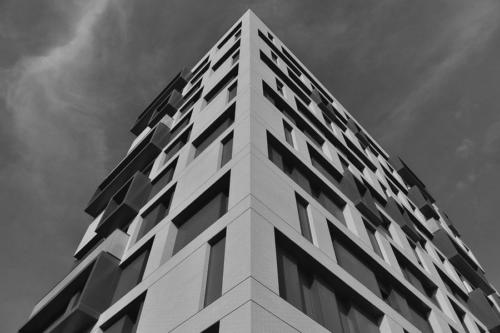 Blanco-y-negro-2020_TURCO BN 2020 (5)