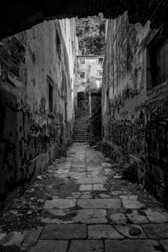 Blanco-y-negro-2020_guillermoperea-callejon
