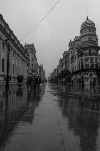Paisa-urbano-19-DavidAlmendral_foto05