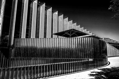 Paisa-urbano-19-Manuel Iglesias_5
