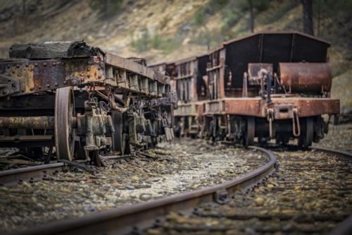 Trenes - Amelia Pardo