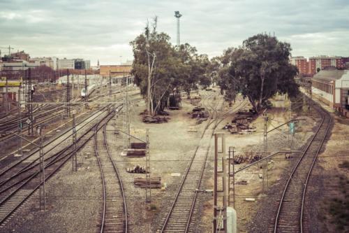 Trenes - David Almendral_caminos