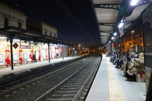Trenes - Pepe González López_2