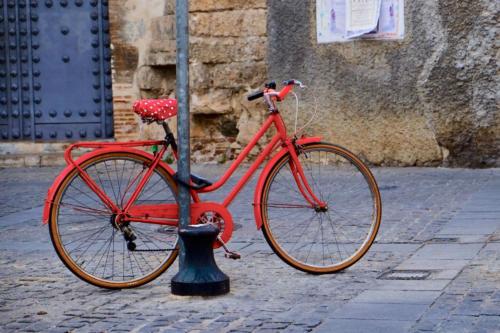 Paolo. Bike